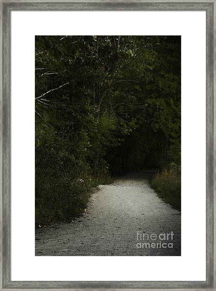 The Path In The Darkness Framed Print