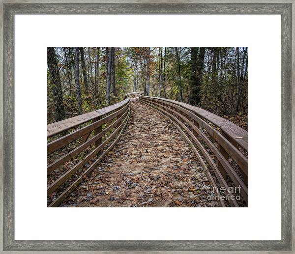 The Path That Leads Framed Print
