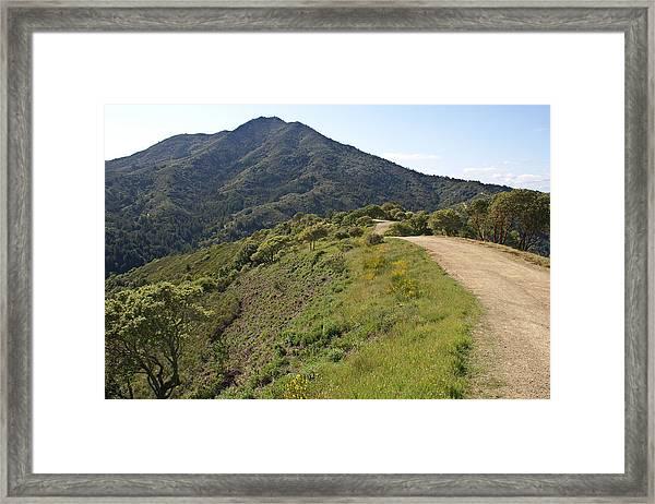 The Path To Tamalpais Framed Print