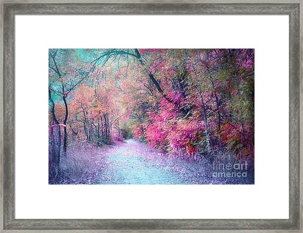 The Pathway Of Gentle Memories Framed Print