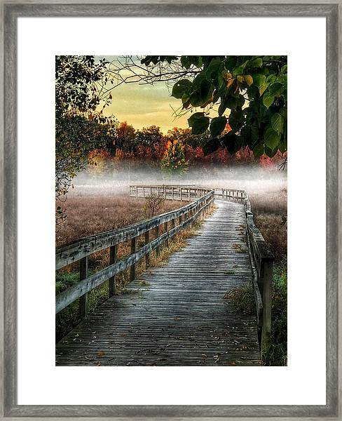 The Peaceful Path Framed Print