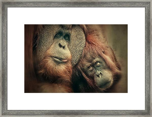 The People Of The Forest Framed Print