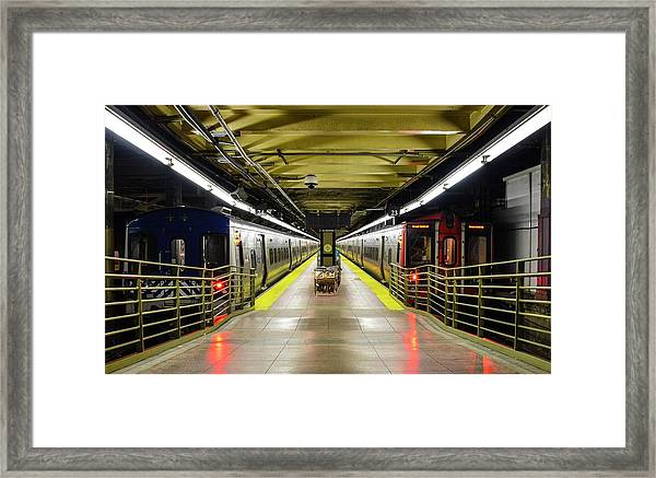 The Platform Framed Print