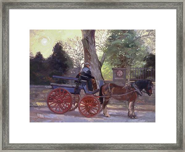 The Pony Trappe Framed Print