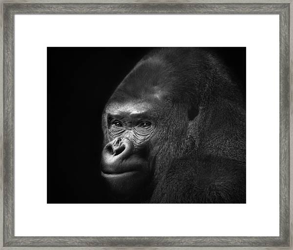 The Pose Framed Print