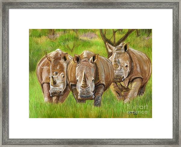 The Power In Three Framed Print