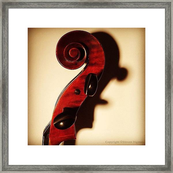 The Profile  Framed Print