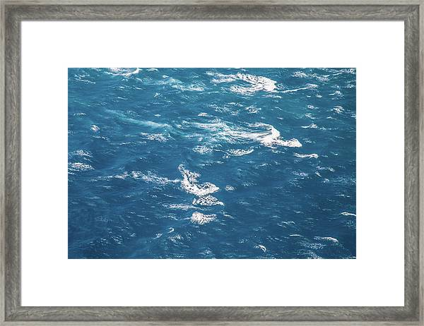The Race Framed Print