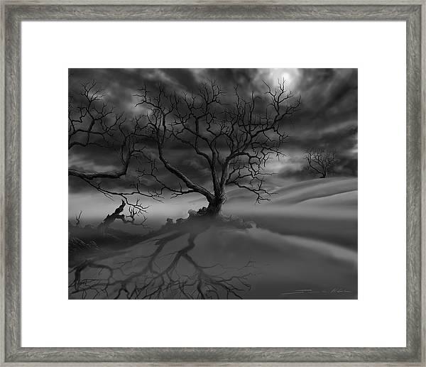 The Raven's Night Framed Print