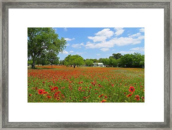 The Red Carpet Framed Print