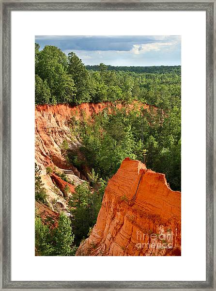 The Red Dirt Of Georgia Framed Print