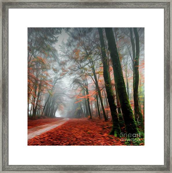 The Red Path Framed Print