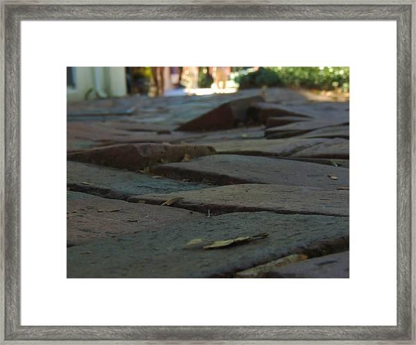 The Rising Dead Of Savannah Framed Print