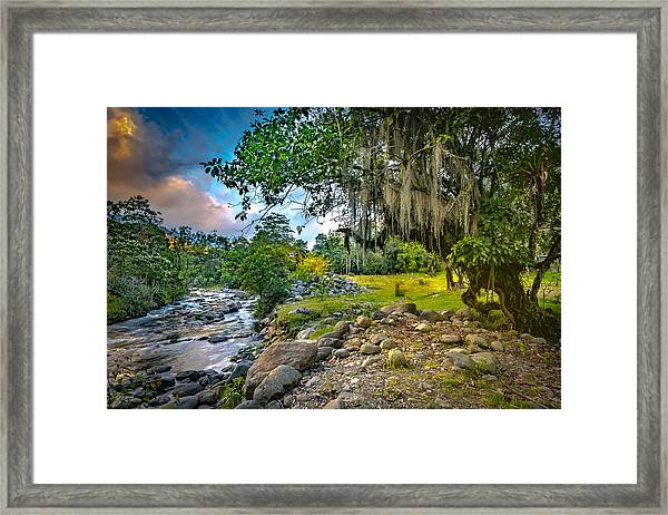 The River At Cocora Framed Print