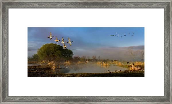 The River Bottoms Framed Print