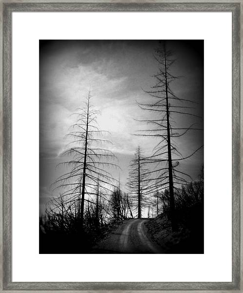 The Road Not Taken    Up On Hwy 2509 Framed Print
