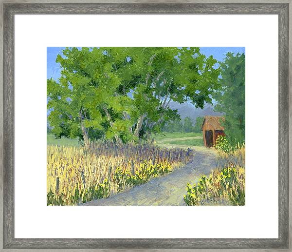 The Road To The Back Field Framed Print