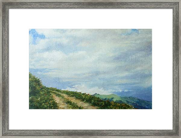 The Road To The Mountain Framed Print