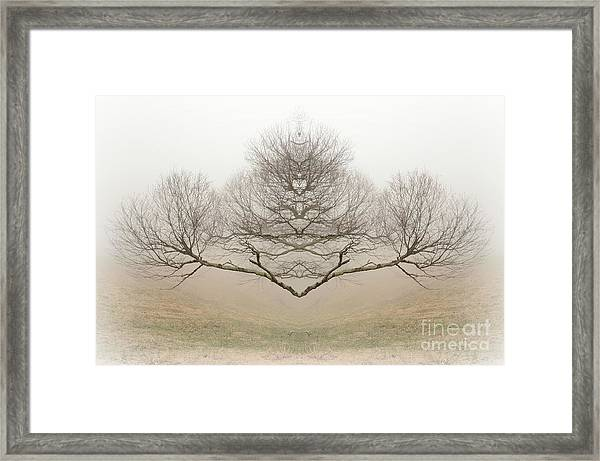 The Rorschach Tree Framed Print