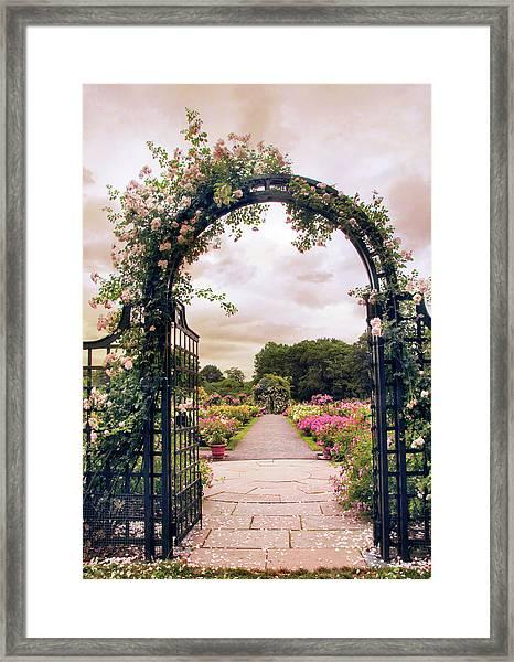 The Rose Allee Framed Print