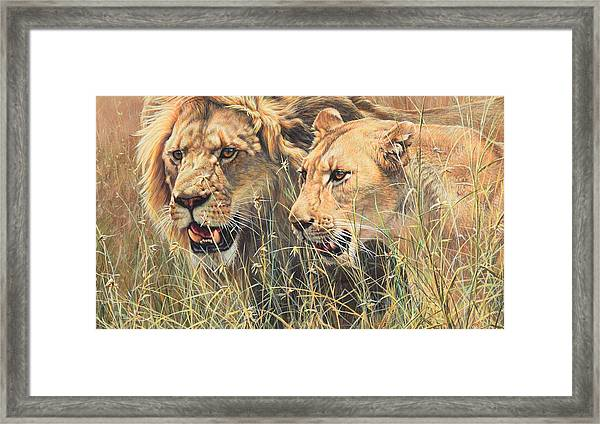 The Royal Couple II Framed Print