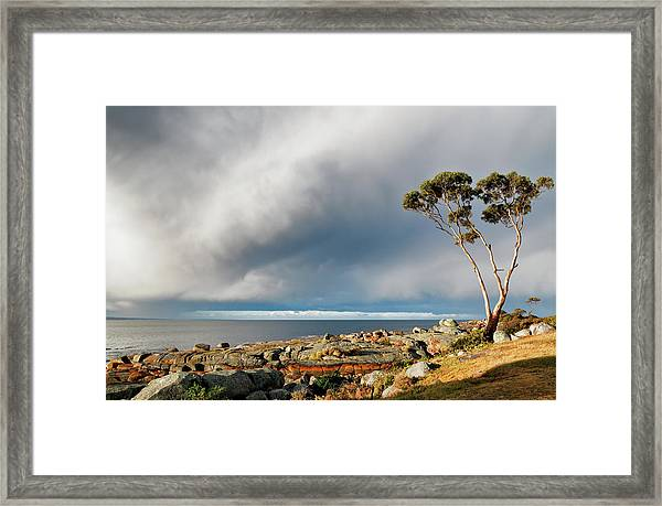 The Sea And The Sky Framed Print