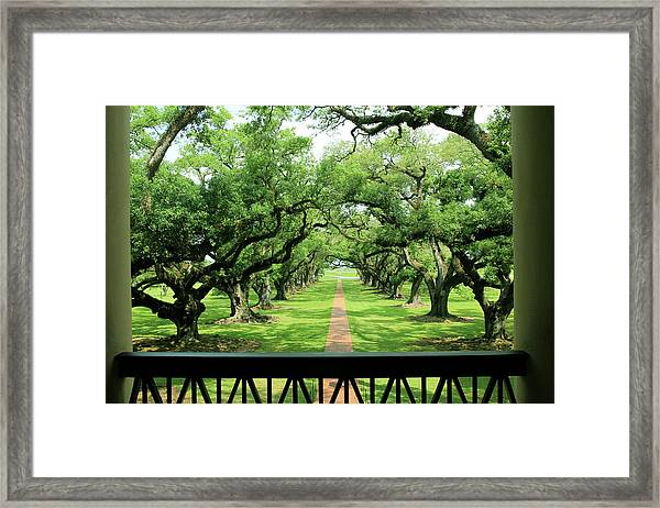 The Shade Of The Oak Tree Framed Print