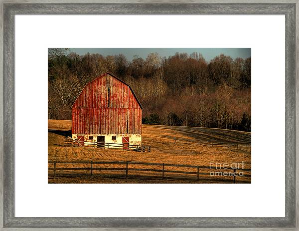Framed Print featuring the photograph The Simple Life by Lois Bryan