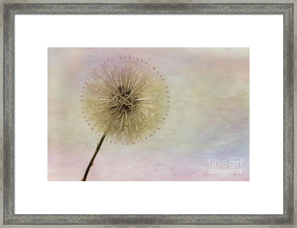 The Simplest Things Framed Print
