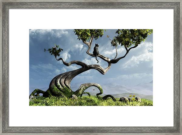The Sitting Tree Framed Print