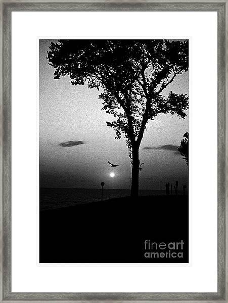 The Spirit Of Life Framed Print