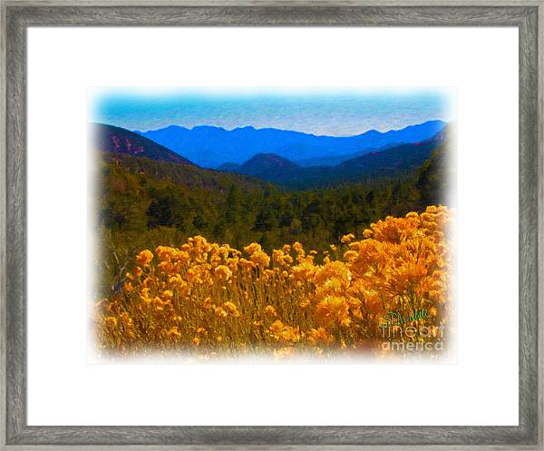 The Spring Mountains Framed Print