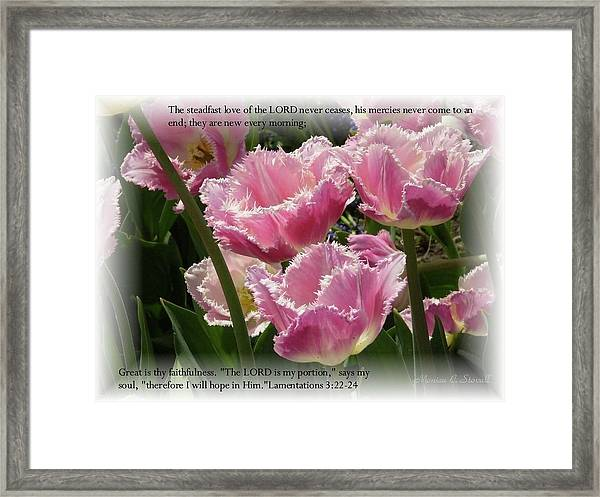 The Steadfast Love Of The Lord Never Ceases... Framed Print