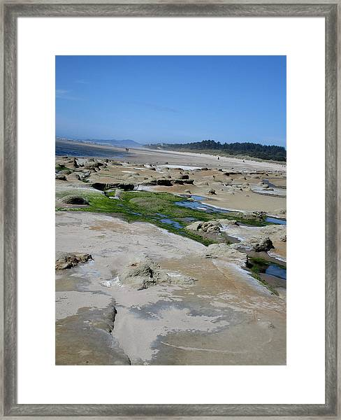 The Strange And The Beautiful Framed Print