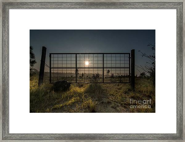 The Sun Is Free Framed Print