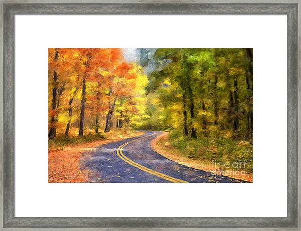 Framed Print featuring the photograph The Sunny Side Of The Street by Lois Bryan