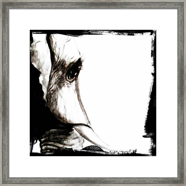 The Three Musketeers - Elephant Framed Print