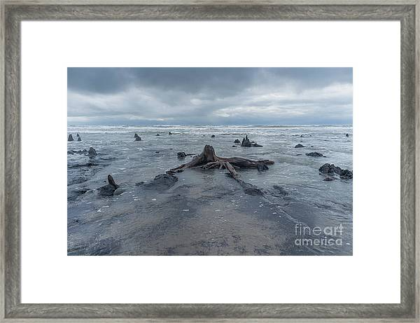 The Tide Comes In Over The Bronze Age Sunken Forest At Borth On The West Wales Coast Uk Framed Print