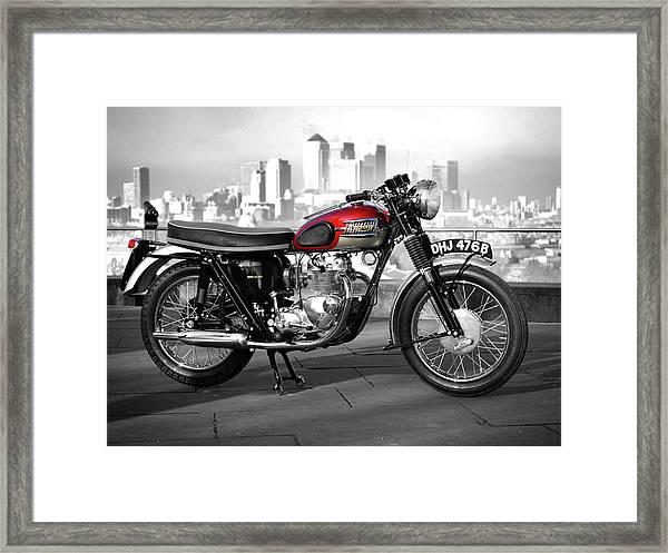 The Tiger 100 1964 Framed Print