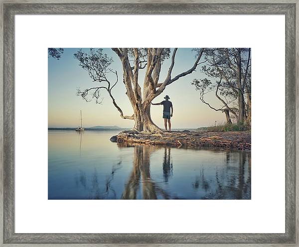 The Tree And Me Framed Print