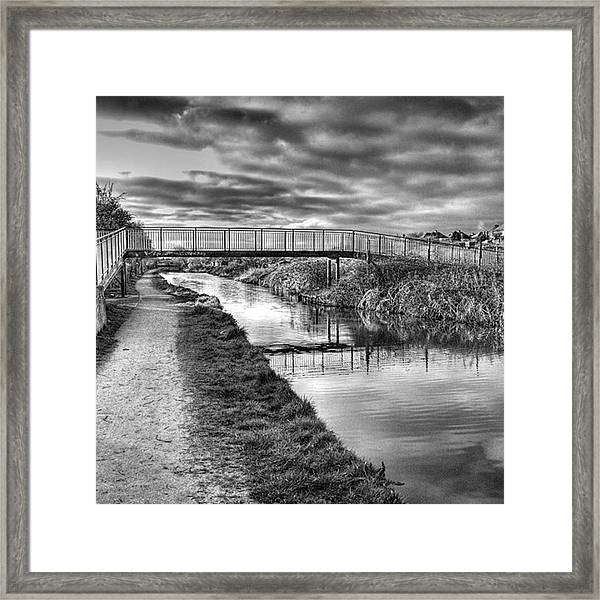 The Unfortunately Named Cat Gallows Framed Print