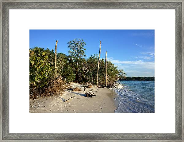 The Unspoiled Beauty Of Barefoot Beach In Naples - Landscape Framed Print