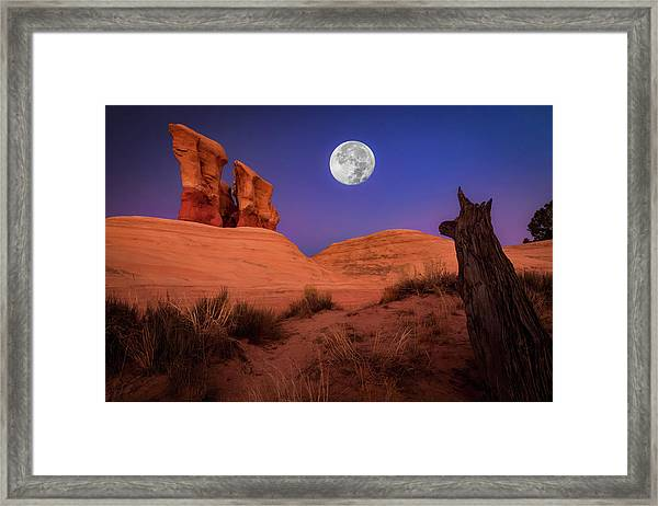 The Watcher Framed Print