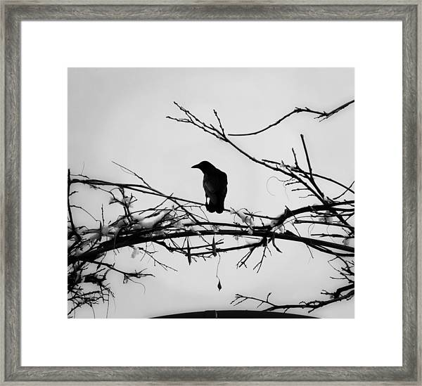 The Watchman Framed Print by Vail Joy