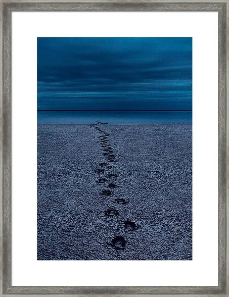 The Way Back Framed Print