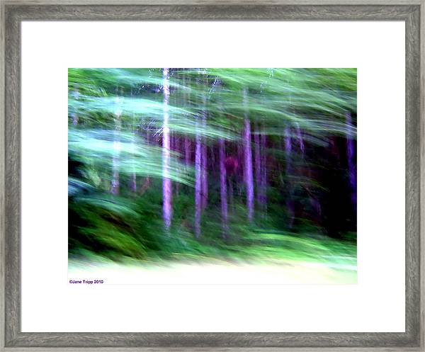 The Way In Framed Print by Jane Tripp