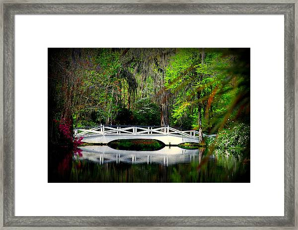 The White Bridge In Magnolia Gardens Sc Framed Print