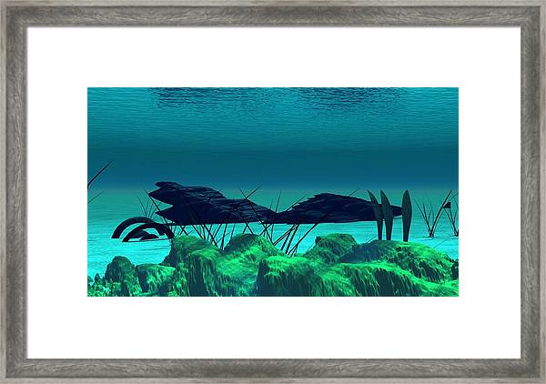 The Wreck Diving The Reef Series Framed Print