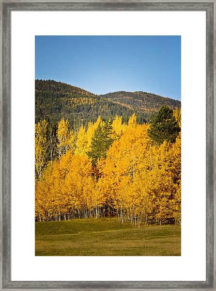 Them Thar Hills Framed Print