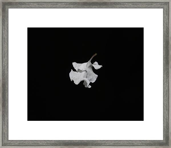Thin Air Framed Print